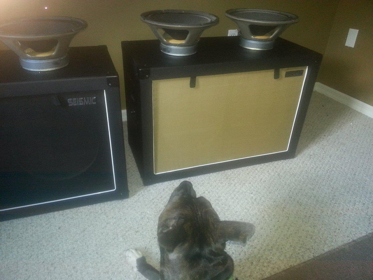 Best cab/speakers for EVH 50w?-cab-2-jpg