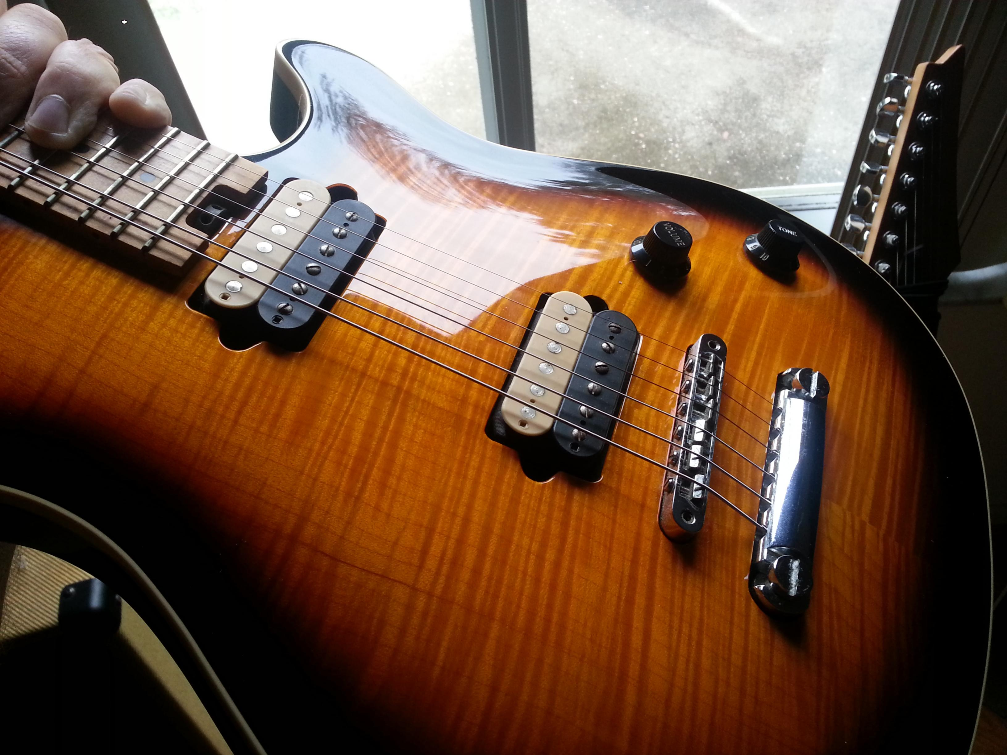 Played a USA Peavey Wolfgang this past weekend-evh-2-jpg