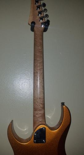New Free Guitar Day-washburn-1-jpg