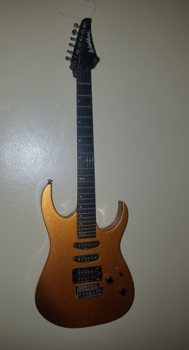 New Free Guitar Day-washburn-2-jpg